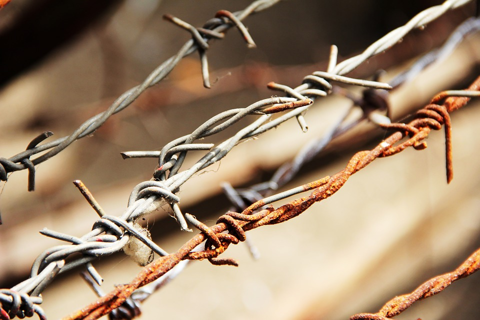 barbed-wire-1559696_960_720