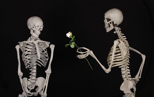 skeletal-601213__340