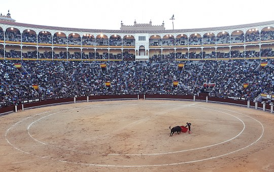 bullfight-406865__340